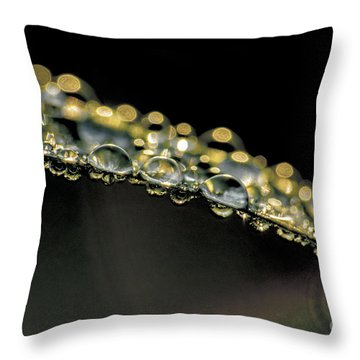 Drops On The Green Grass Throw Pillow