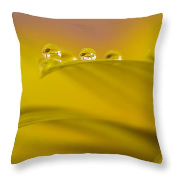 Drops Resting On A Leaf Throw Pillow