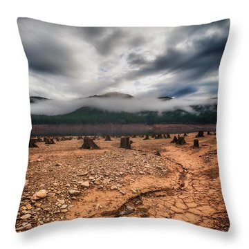 Throw Pillow featuring the photograph Drought by Ryan Manuel