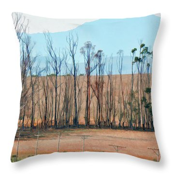 Drought-stricken South African Farmlands - 3 Of 3 Throw Pillow