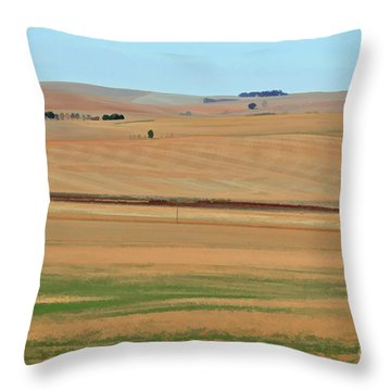 Drought-stricken South African Farmlands - 2 Of 3  Throw Pillow
