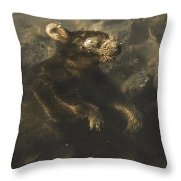 Drowned Tasmanian Possum Throw Pillow