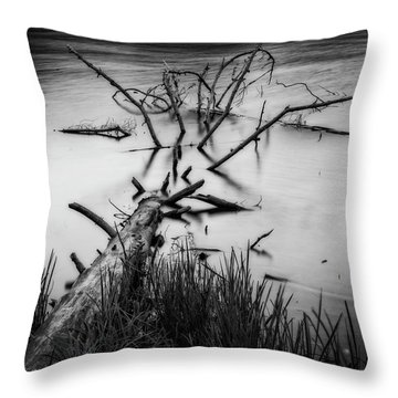 Throw Pillow featuring the photograph Drowning by Alan Raasch