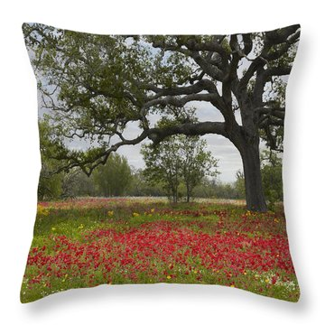 Throw Pillow featuring the photograph Drummonds Phlox Meadow Near Leming Texas by Tim Fitzharris