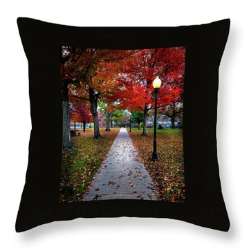 Drury Fall Throw Pillow