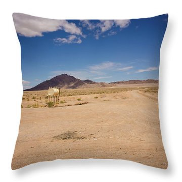 Dry And Oily Throw Pillow