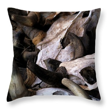Dry As Bones Throw Pillow by Linda Shafer