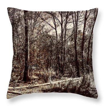 Throw Pillow featuring the photograph Dry Autumn Landscape Of A Vintage Woodland by Jorgo Photography - Wall Art Gallery