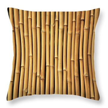 Dry Bamboo Rows Throw Pillow by Brandon Tabiolo - Printscapes