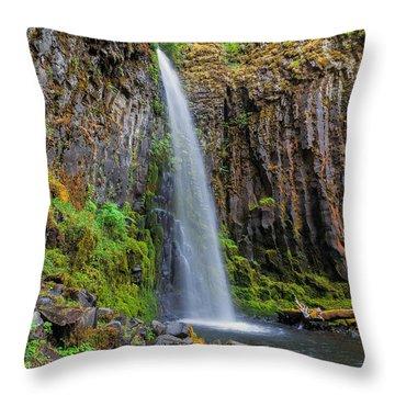 Dry Creek Falls Throw Pillow by David Gn