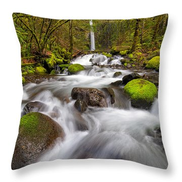Dry Creek Falls In Spring Throw Pillow by David Gn