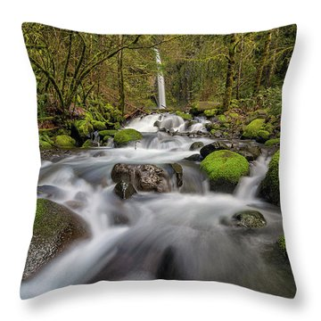 Dry Creek Falls In Springtime Throw Pillow by David Gn