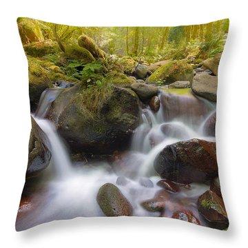 Dry Creek II Throw Pillow by David Gn