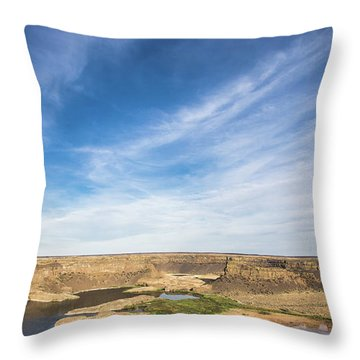 Dry Fall, Washington Throw Pillow