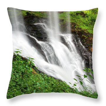 Dry Falls Throw Pillow by Allen Carroll