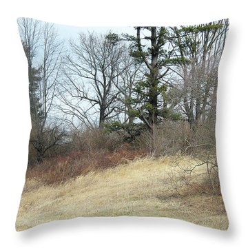 Dry Field Throw Pillow