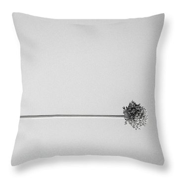 Dry Flower - Black And White Art Photo Throw Pillow by Modern Art Prints