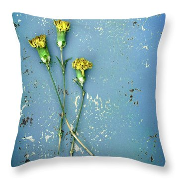 Dry Flowers On Blue Throw Pillow by Jill Battaglia