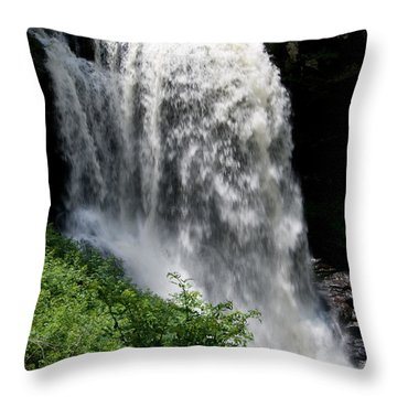 Dry Falls 10 Throw Pillow