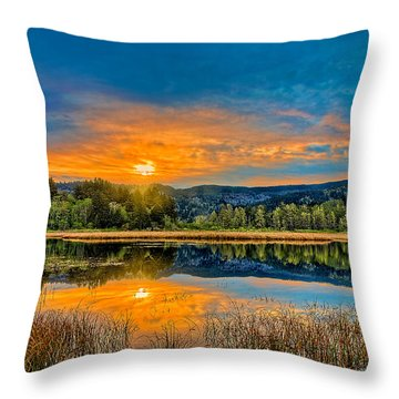 Dry Lagoon Spring Morning Throw Pillow by Greg Nyquist