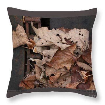 Dry Leaves And Old Steel-ii Throw Pillow