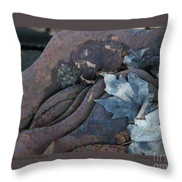Throw Pillow featuring the photograph Dry Leaves And Old Steel-ix by Patricia Overmoyer