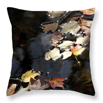 Dry Leaves Floating On The Surface Of A Stream Throw Pillow