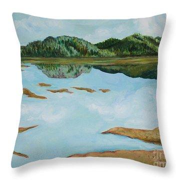 Dry Pass Throw Pillow by Cynthia Lagoudakis