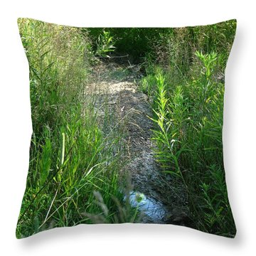 Dry Patch  Throw Pillow