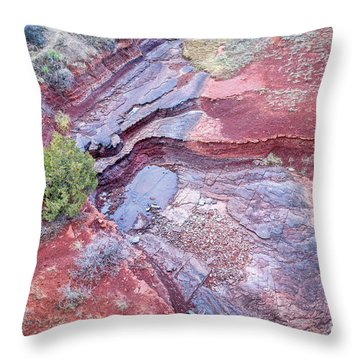 Dry Stream Canyon Areial View Throw Pillow