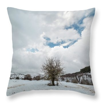 Dry Tree In The Snow Throw Pillow