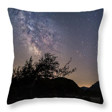 Dry Tree Under The Stars Throw Pillow