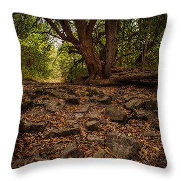 Throw Pillow featuring the photograph Dry Wash And Osage Orange by Jeff Phillippi