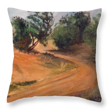 Dry Wash Road Throw Pillow by Sherril Porter