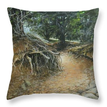 Dry Wash Throw Pillow