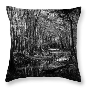 Drying Creek Bed Throw Pillow