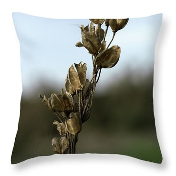 Drying Flower Throw Pillow by Shlomo Zangilevitch