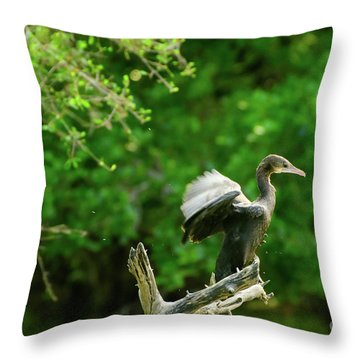 Drying Indian Cormorant Throw Pillow