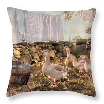 Throw Pillow featuring the photograph Drying Out by Robin-Lee Vieira
