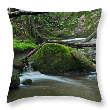 Dual Falls Throw Pillow