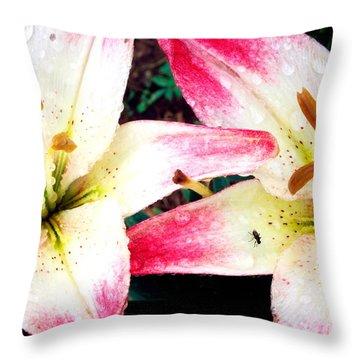 Dual Pinks II Throw Pillow by Amanda Kiplinger