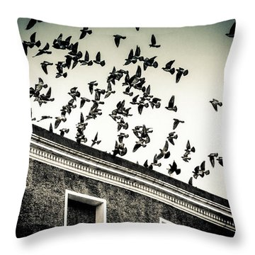 Flight Over Oscar Wilde's Hood, Dublin Throw Pillow
