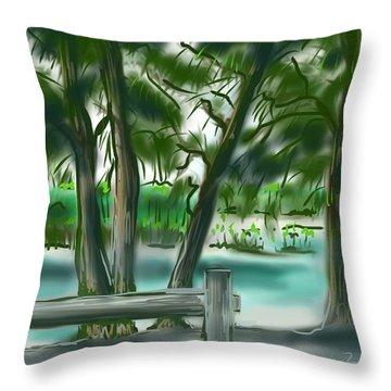 Dubois Park Lagoon Throw Pillow