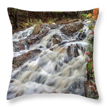 Duchesnay Falls Throw Pillow by Brian Boudreau