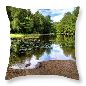 Throw Pillow featuring the photograph Duck At Covewood by David Patterson