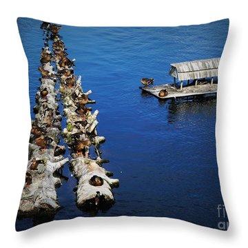 Duck Drop-inn Throw Pillow