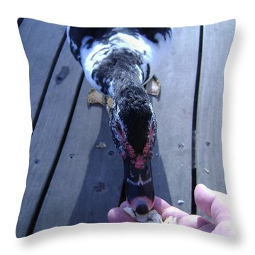 Duck Eating From My Hand Throw Pillow