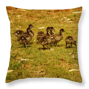 Duck Family I Throw Pillow by Cassandra Buckley