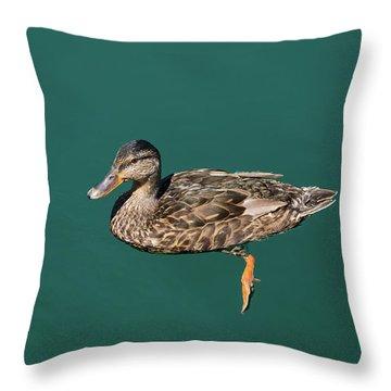 Duck Floats Throw Pillow
