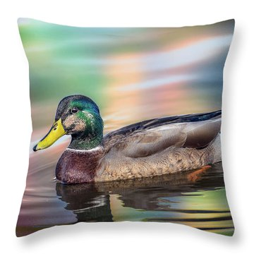 Duck In Water With Autumn Colors Throw Pillow